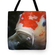Lucky Koi 1 Tote Bag