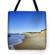 Lucy Vincent Beach Tote Bag