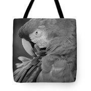 Macaws Of Color B W 17 Tote Bag