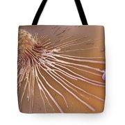 Macrophage Fighting Bacteria Tote Bag