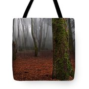 Magic Light Tote Bag by Jorge Maia