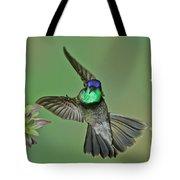 Magnificent Hummingbird Tote Bag