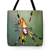 Male And Female Silk Spiders With Prey Tote Bag