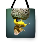Masked Weaver At Nest Tote Bag