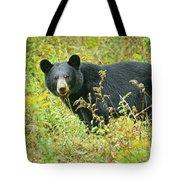 Meadow Black Bear Tote Bag
