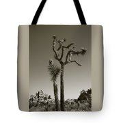 Joshua Tree National Park Landscape No 2 In Sepia Tote Bag
