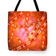 Microscopic View Of Anthrax Tote Bag