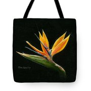 Midnight Paradise Tote Bag