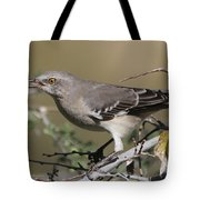 Mocking Bird With Ripe Hackberry Tote Bag