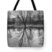 Morning Reflection Tote Bag