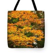 Mount Koya Koya San Japan  Tote Bag