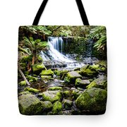 Mt Field National Park Tote Bag