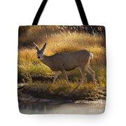 Mule Deer   #3950 Tote Bag
