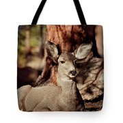 Mule Deer Doe Tote Bag