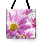 Mums Flowers Against White Background Tote Bag