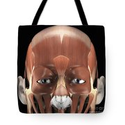 Muscles Of The Face Tote Bag