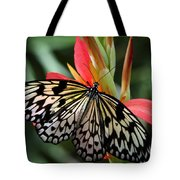 Nature's Treasures  Tote Bag