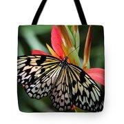 Nature's Treasures  Tote Bag