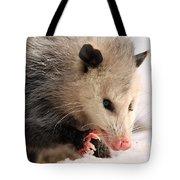 North American Opossum In Winter Tote Bag