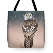 Northern Hawk Owl Tote Bag
