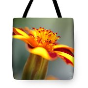 Novelty French Marigold Named Mr. Majestic Tote Bag