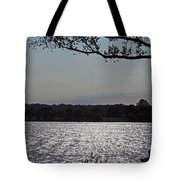 On A Glistening River Tote Bag