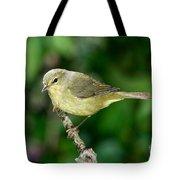 Orange-crowned Warbler Tote Bag