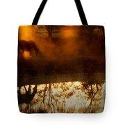 Orange Mist Tote Bag