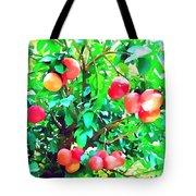 Orange Trees With Fruits On Plantation Tote Bag