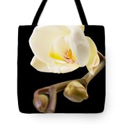 Orchid Tote Bag by Ilze Lucero