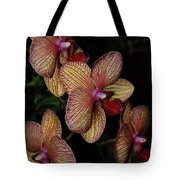 Orchid Quad Tote Bag