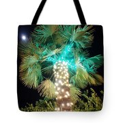 Outdoor Christmas Decorations Tote Bag