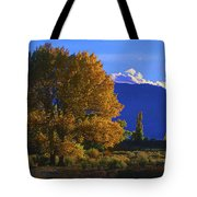 Owens Valley Fall Colors  Tote Bag