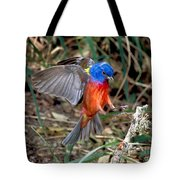 Painted Bunting Passerina Ciris Tote Bag