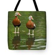 Pair Black-bellied Whistling-ducks Tote Bag