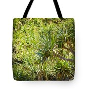 Pandanus Palm Tree Tote Bag
