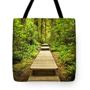 Path In Temperate Rainforest Tote Bag