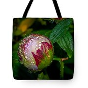Peony With Rain Drops Tote Bag