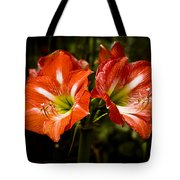 Petal Pair Tote Bag