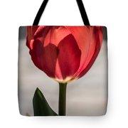 Petals And Sun Tote Bag