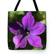 Petunia Hybrid From The Sparklers Mix Tote Bag