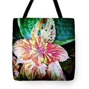 Phoenician Fauna Tote Bag