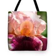 Pink Sunshine Tote Bag