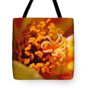 Portulaca In Orange Fading To Yellow Tote Bag