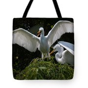 Prepare For Flight Tote Bag