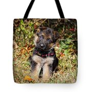 Pretty Puppy Tote Bag
