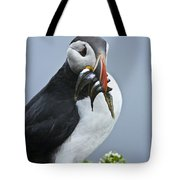 Puffin With Fish Tote Bag