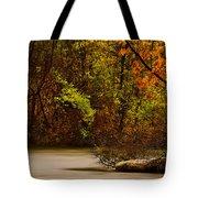 Rainy Morning Tote Bag