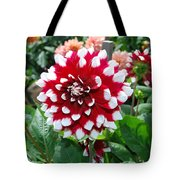Red And White Flower Tote Bag
