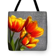 Red And Yellow Tulip's In A Window Tote Bag by Robert D  Brozek